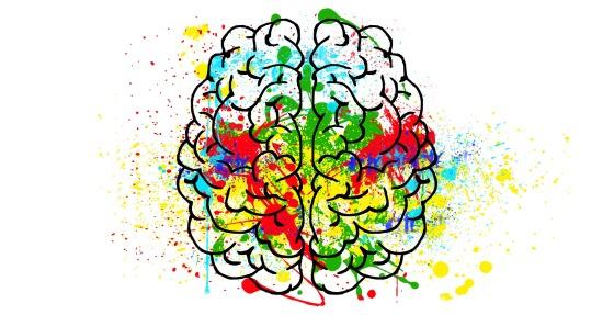 brain-2062048_1920
